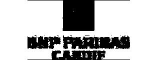 logo bnp paribas verzekeringen grijs